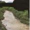 Moris (Israel Meza Moreno) | Paisaje censurado 8 / Censored landscape 8, 2011