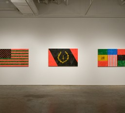 The African-American Flag Project